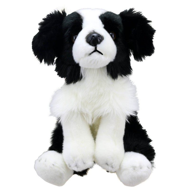 Border Collie - Wilberry Favourites