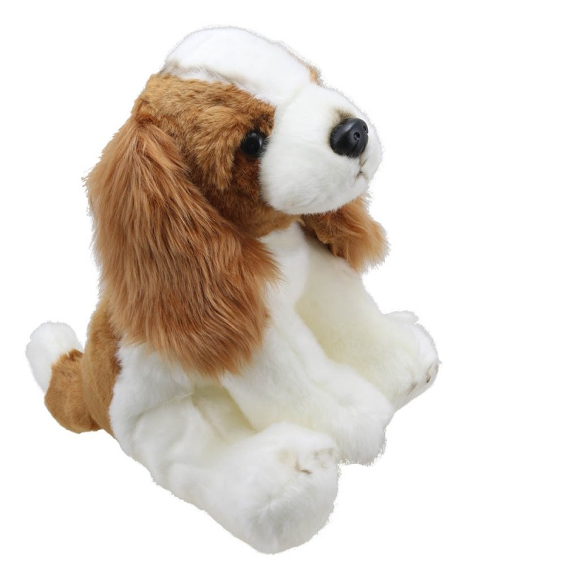 King Charles Spaniel - Wilberry Favourites
