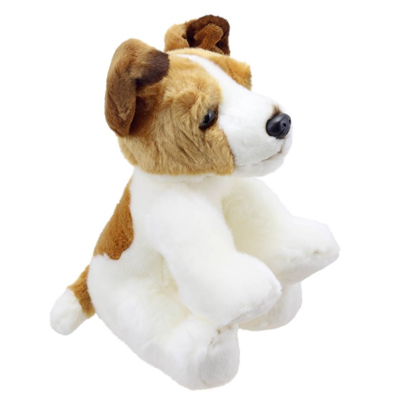 Jack Russell Terrier - Wilberry Favourites